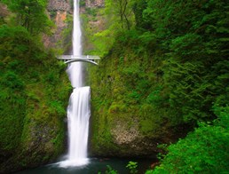 Image of Multnomah Falls